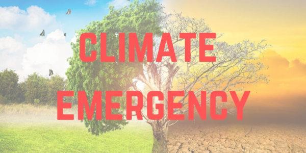 «Κανείς πιο υποκριτικός από τη Νέα Δημοκρατία στα περιβαλλοντικά ζητήματα